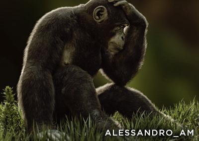 Alessandro_AM